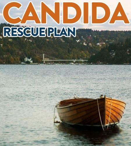 Candida Rescue Plan ( Berry Flavor)