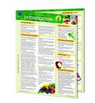 Detoxification 4-Page Chart