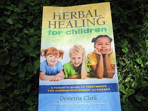 Herbal Healing for Children, by Demetria Clark